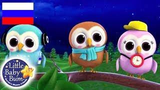 Детские песенки Мудрая старая сова Мультфильмы для детей Литл Бэйби Бам Детские песни