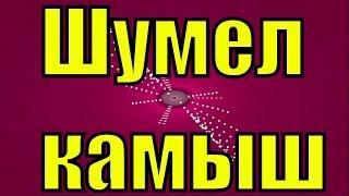 Песня Шумел камыш русская застольная русские народные песни