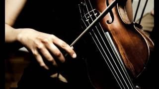 Классическая музыка в современной обработке [2]