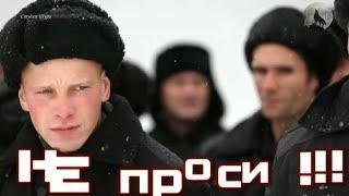 Андрей Шишкин Строгий Режим (Студия Шура) клипы шансон лучшие