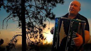 ♫ Стояла чудная сосна ♫ Лучшие  НАРОДНЫЕ песни  под ГАРМОНЬ╰❥Играй гармонь любимая Russian folk song