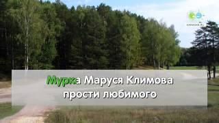 Мурка - Народная (karaoke)